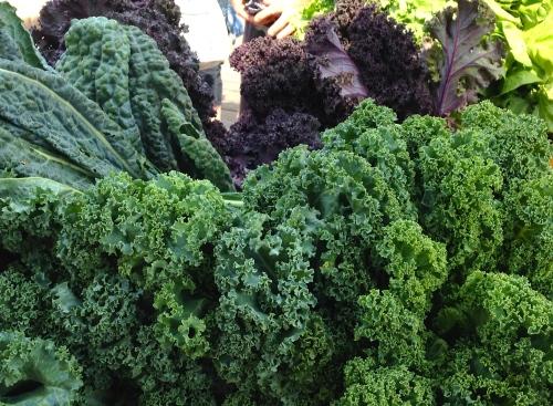 Kale and cavolo nero, 2013