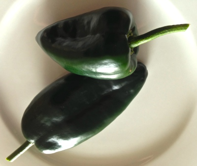 Poblano chillies